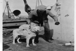 Bilde av Byrd-ekspedisjonen