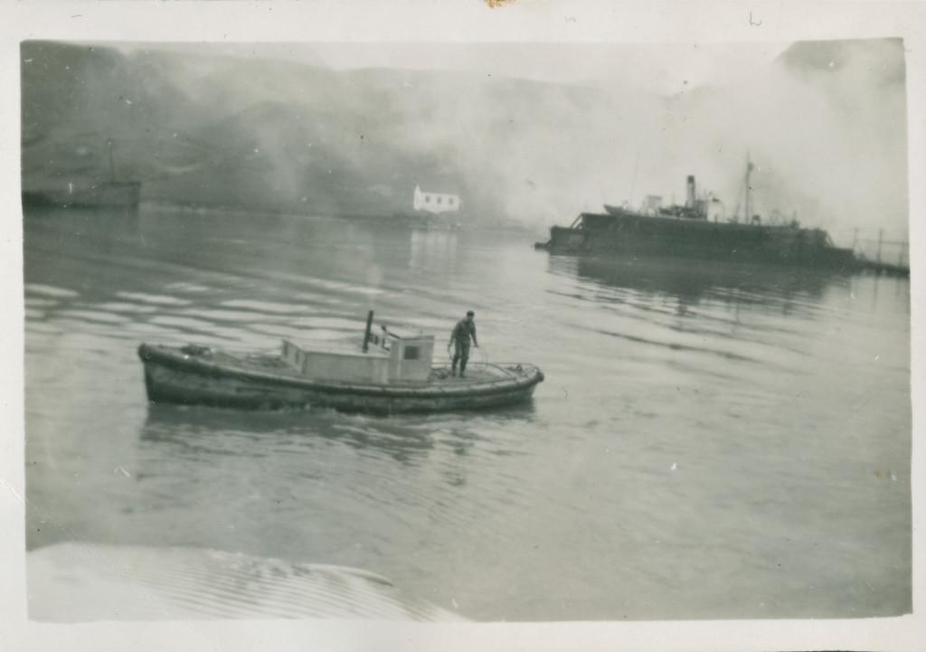 Bilde av Sleping av hval til flenseplan
