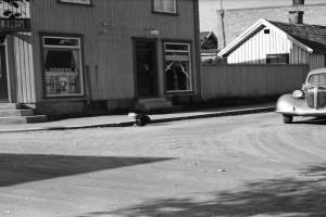Bilde av Lindhjem, Arne