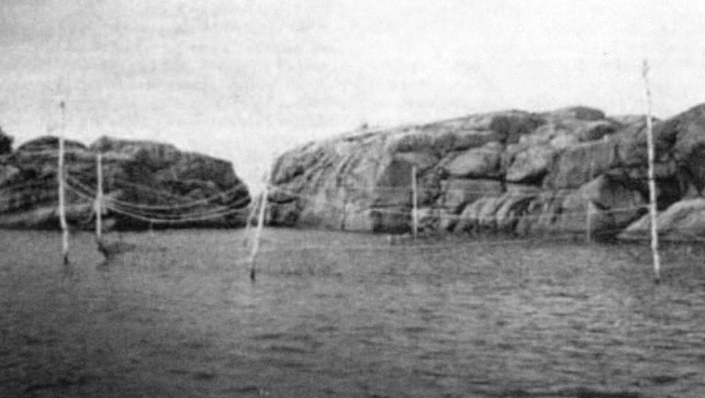Bilde av Bånngarnspåler