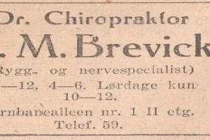 Bilde av Brevick, A.M.