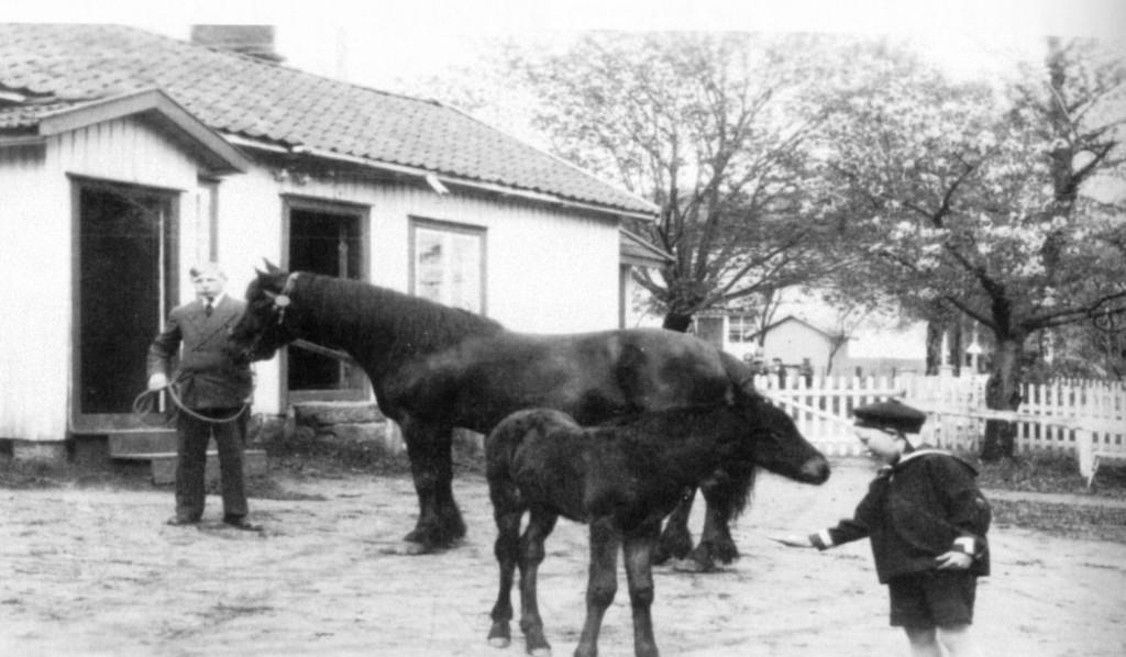 Bilde av Nordre Bugården/Roves gård
