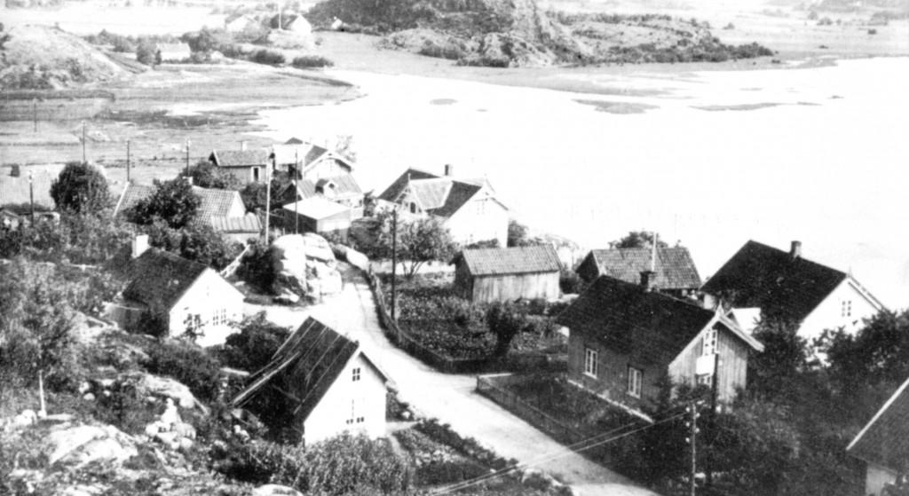 Bilde av Elverhøy