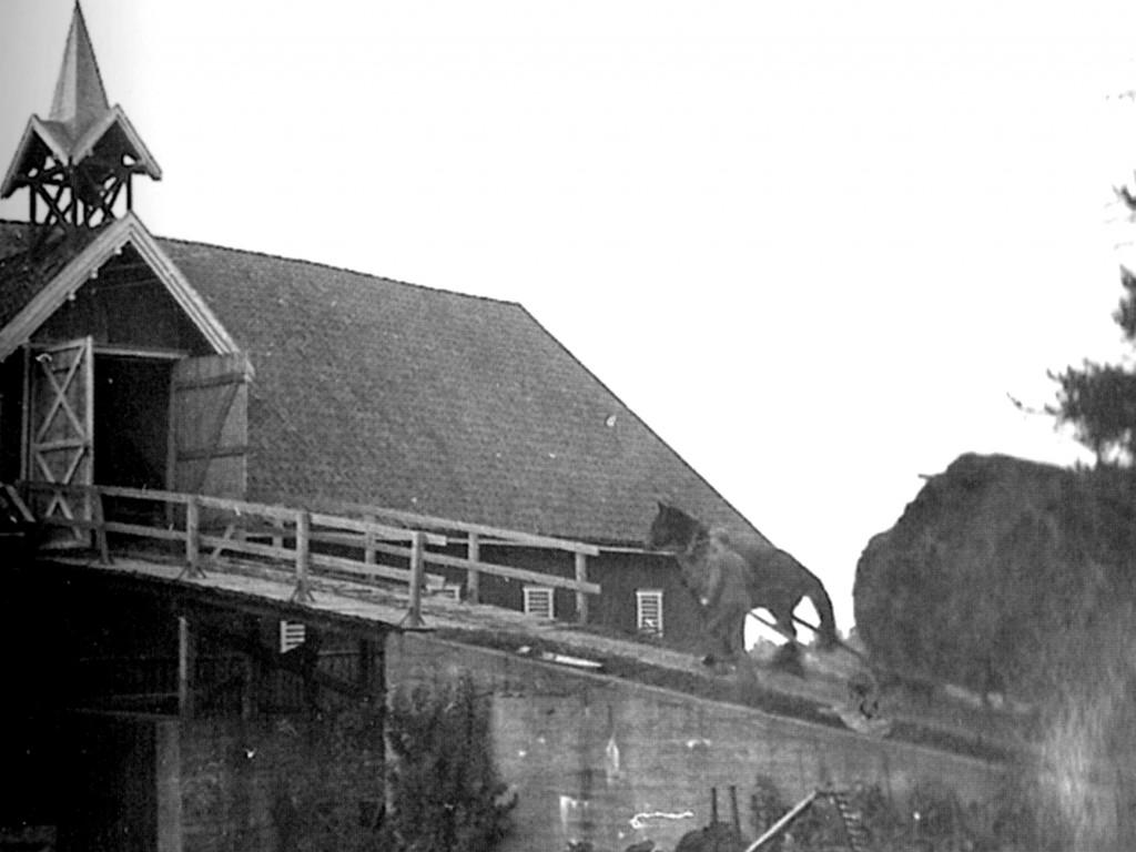 Bilde av Søndre Fevang/Raveien 500