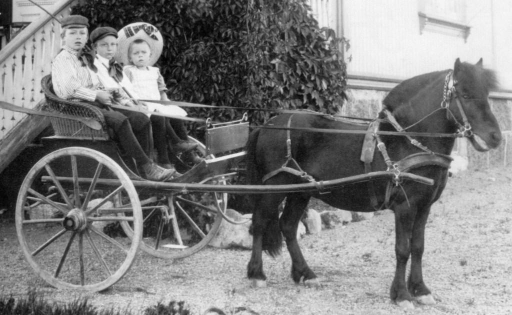 Bilde av På tur med ponnien