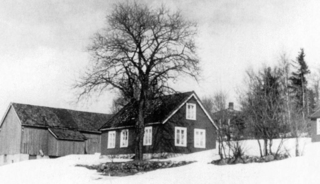 Bilde av Skovly / (Åbolkroken fra 2016)
