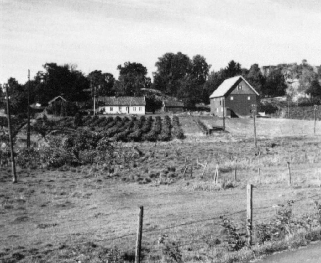 Bilde av Gårdsbruket Strand søndre