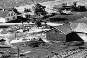 Bilde av Engø Østre