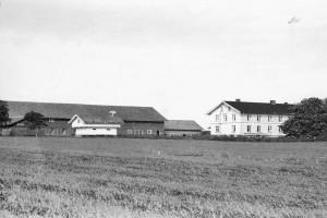 Bilde av Mjølløst søndre og nordre