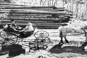 Bilde av Hestekjøretøy