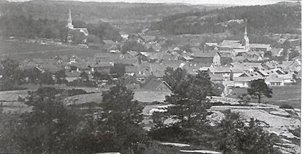 Bilde av Byen sett fra Hauan ca. 1875