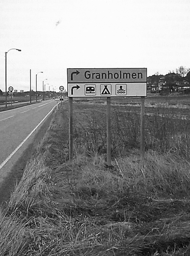 Bilde av Granholmsletta