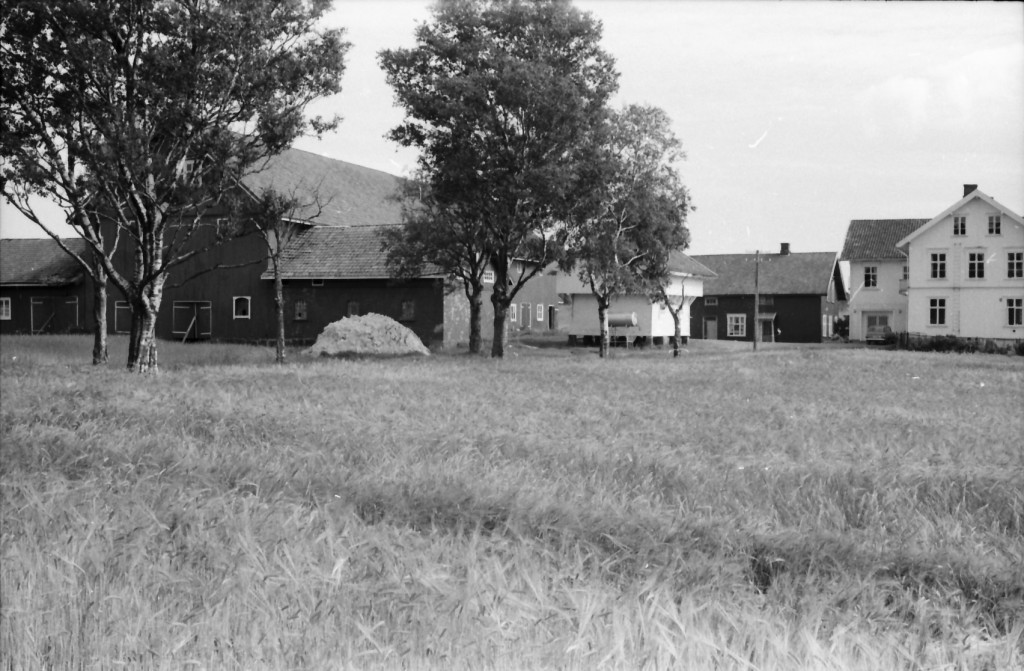 Bilde av Mjølløst gård/Mjølløstveien 15