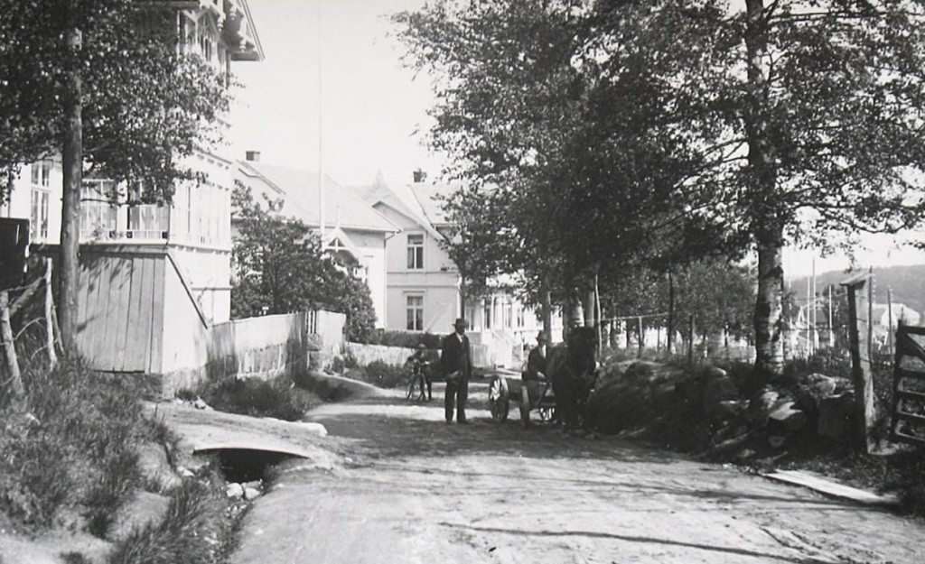 Bilde av Pukkestadveien