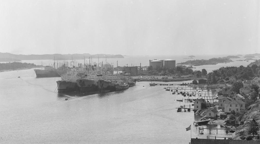 Bilde av Hvalfangstflåten ved Thorøya