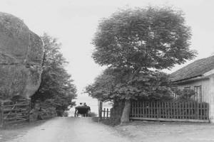 Bilde av Vesterøyveien 315