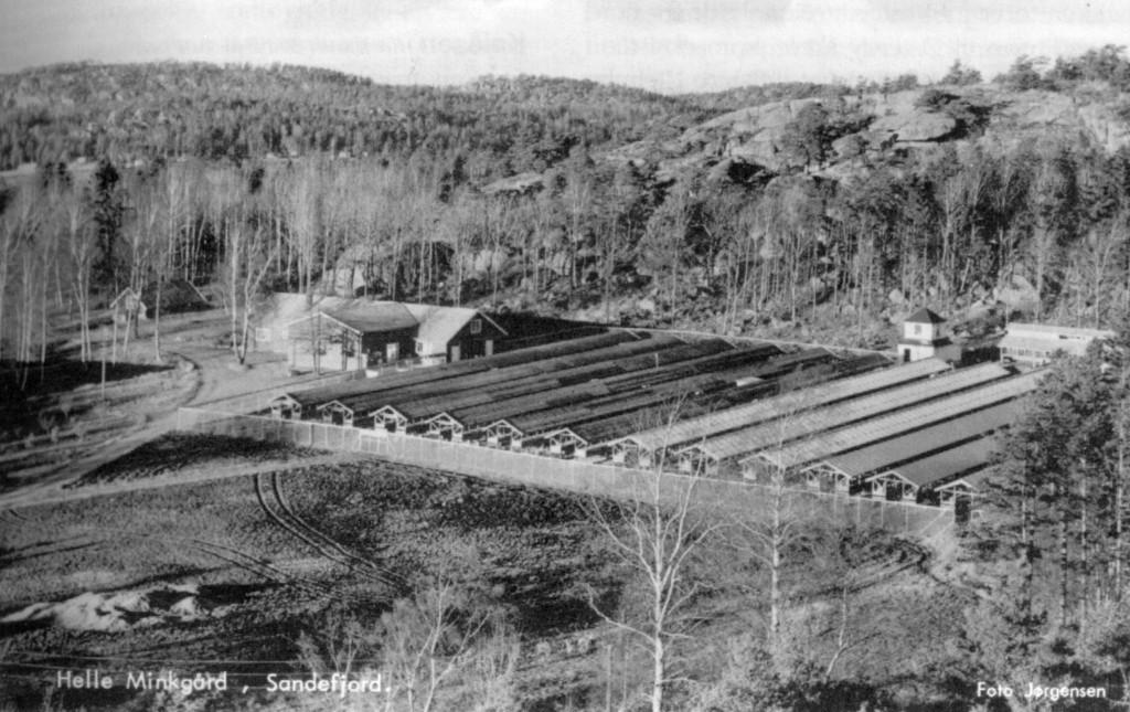Bilde av Helle gårdsbruk/Østerøyveien