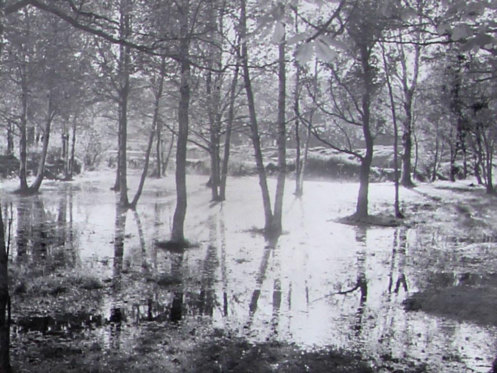Bilde av Havnevesenet pumper vann