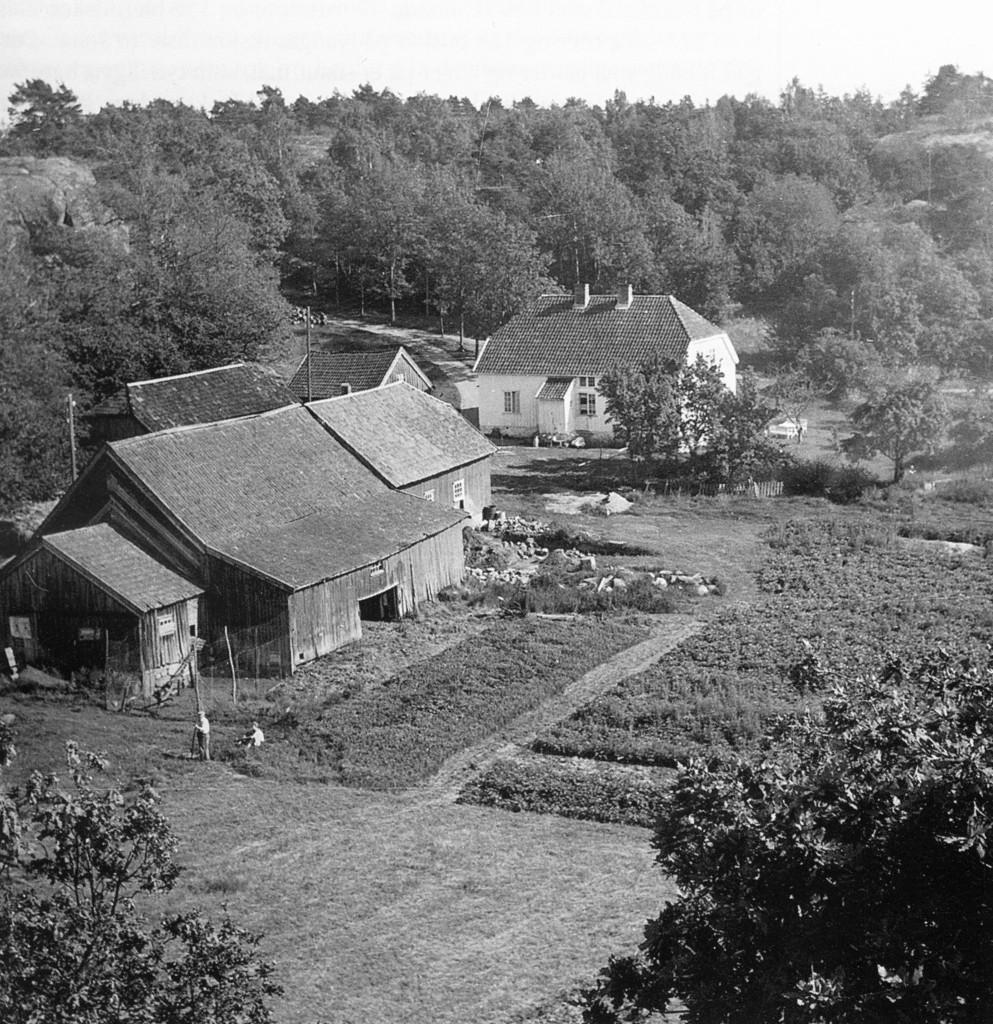 Bilde av Øde Bergan/Berganodden 1