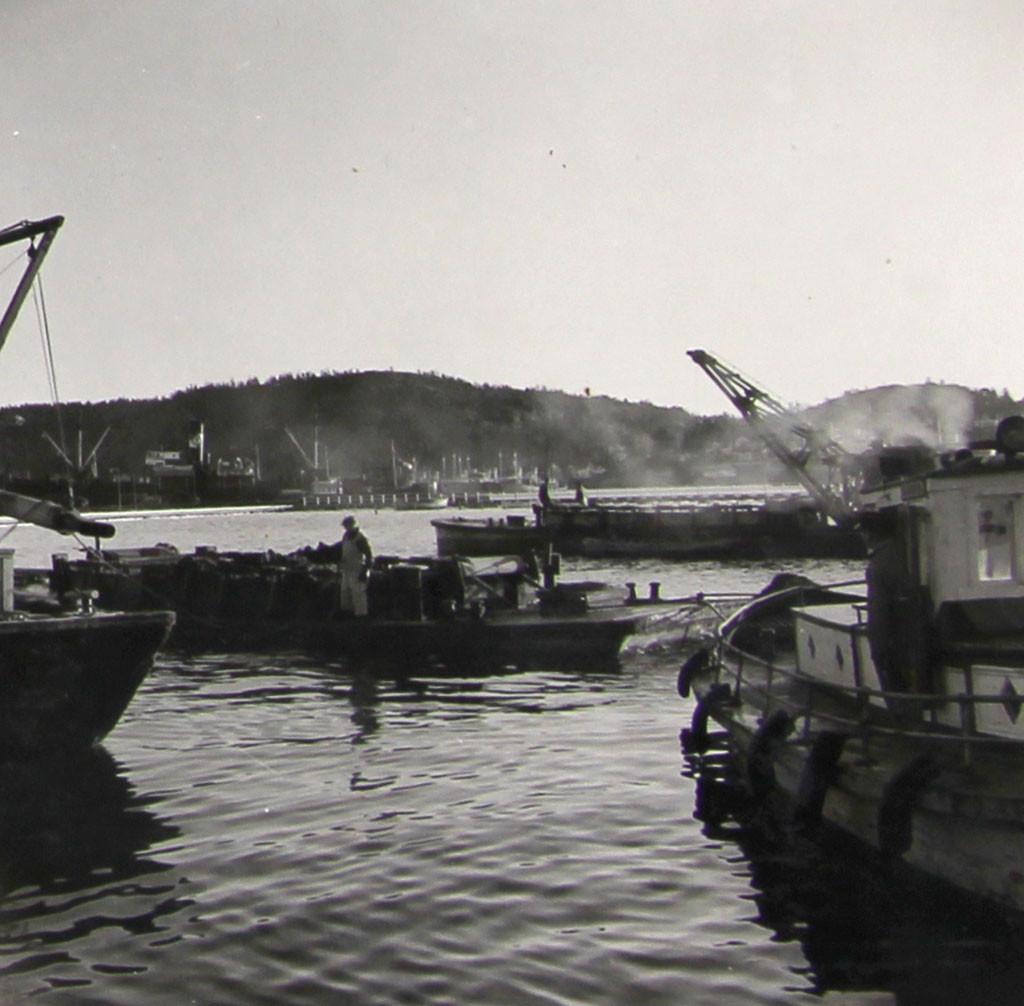 Bilde av Badeparken  -  Stoff til oppfylling