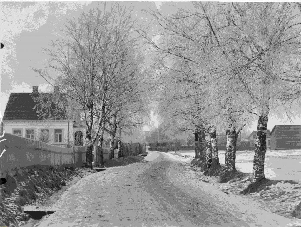Bilde av Bugårdsgata 12