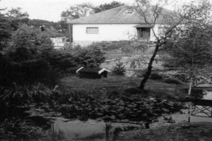 Bilde av Hauanveien 25/Hauanåsen