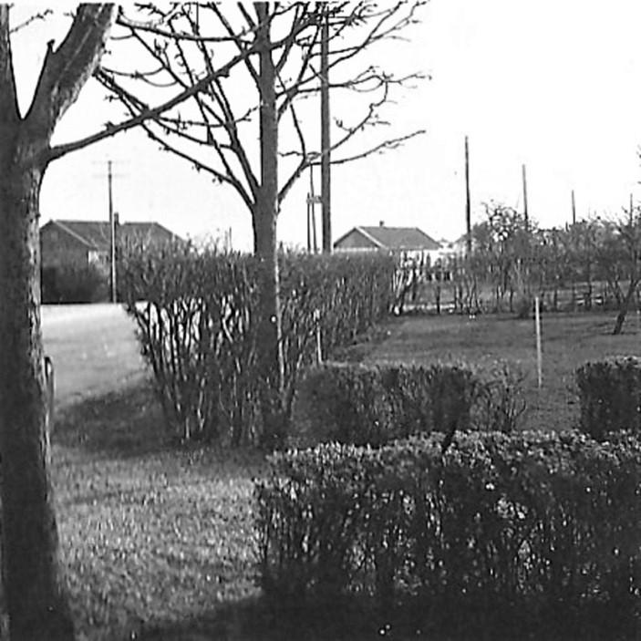 Bilde av Utbedring av veien