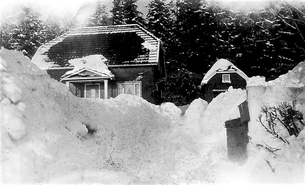 Bilde av Vinter på Raveien