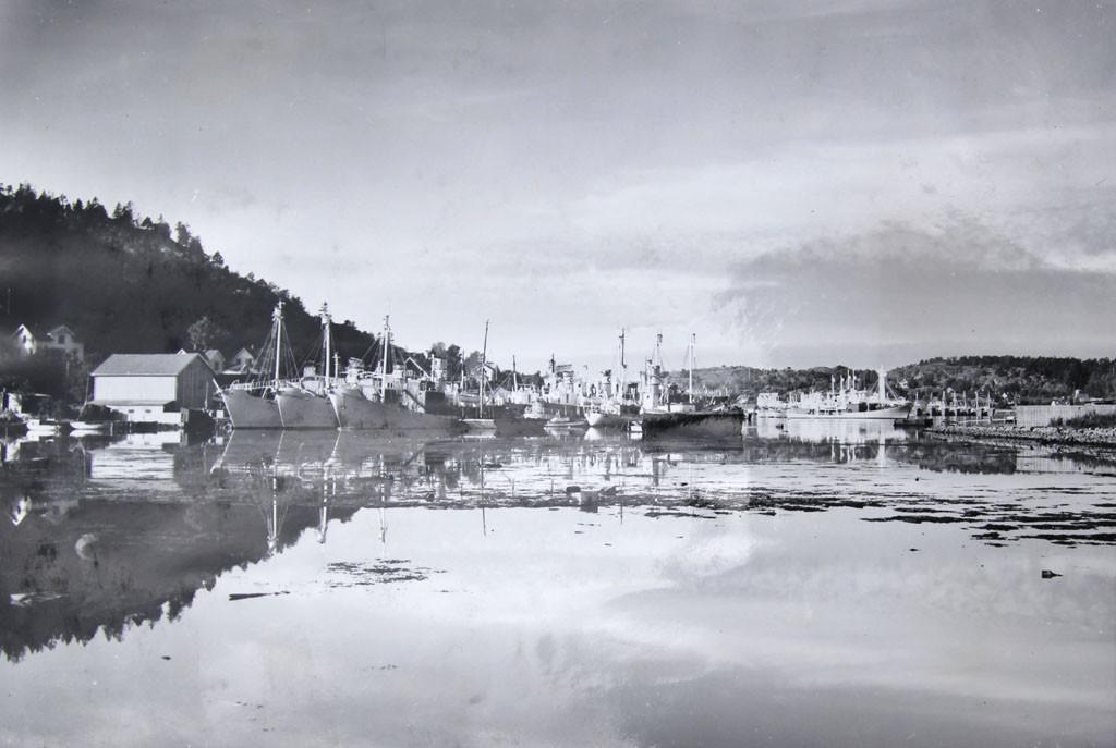 """Bilde av Hvalbåter i opplag sett fra """"Fyllinga"""" på Kilen."""