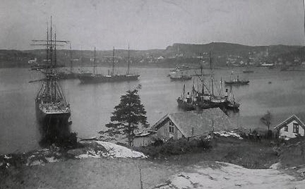 Bilde av Sandefjord Havn kort etter århundreskiftet - 1910