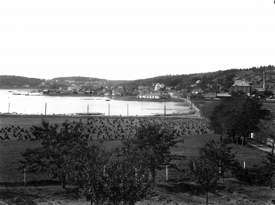 Bilde av Kilen og Grønli