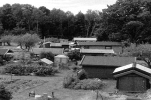 Bilde av Sandefjord kolonihage