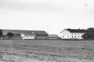 Bilde av Mjølløstveien