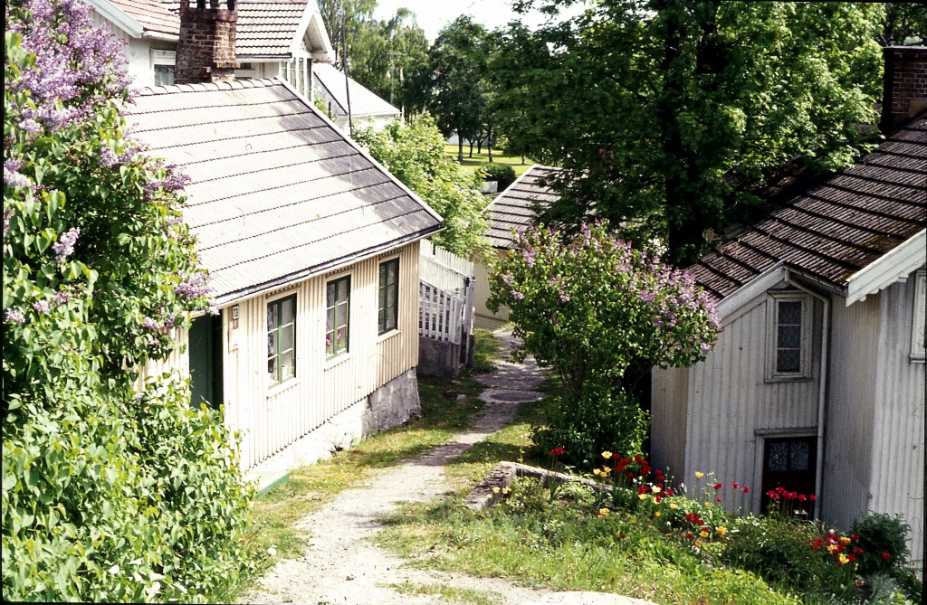 Bilde av Oddefjell 6