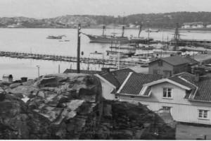 Bilde av Oddefjell 1