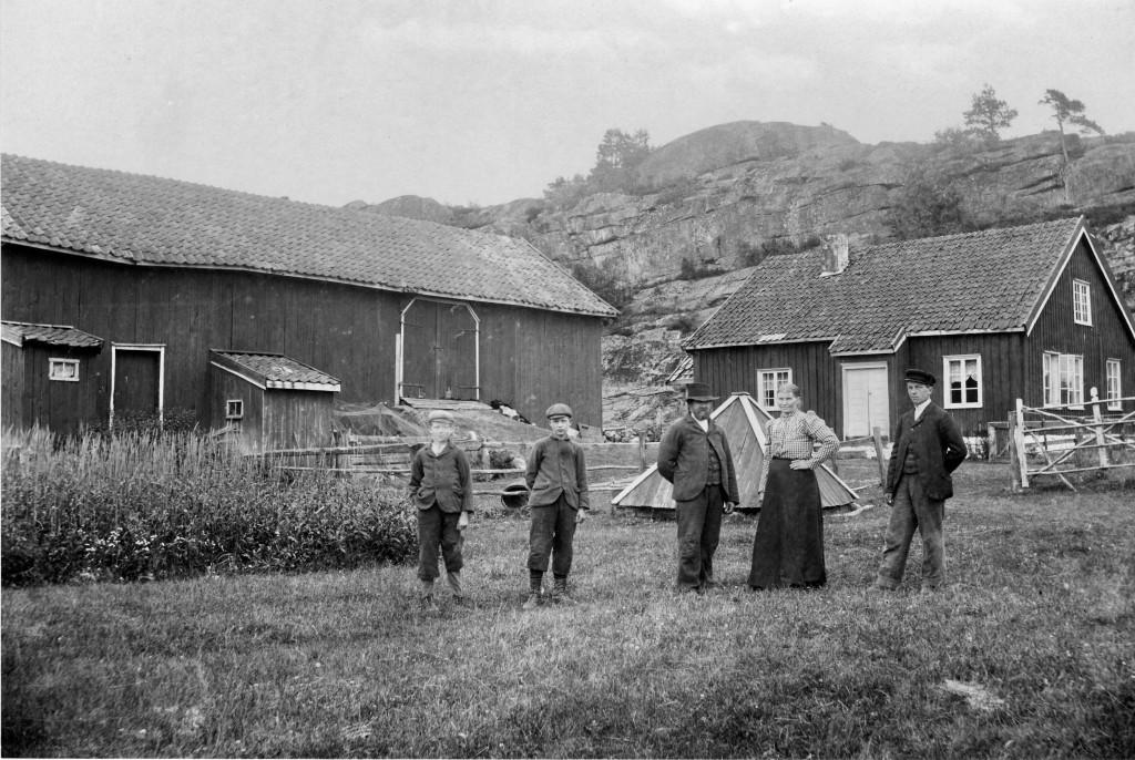 Bilde av Gårdsbruk Bjørn Hasaas/Vesterøyveien 259