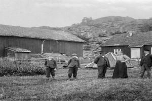 Bilde av Vesterøyveien 259