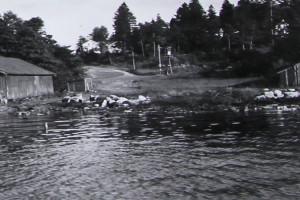 Bilde av Vesterøyveien - Fjellvik