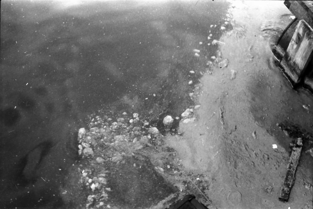 Bilde av 1953 - oljesøl
