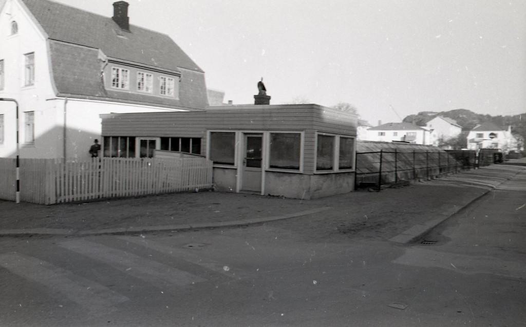 Bilde av 1964  Forsmanns gartneri