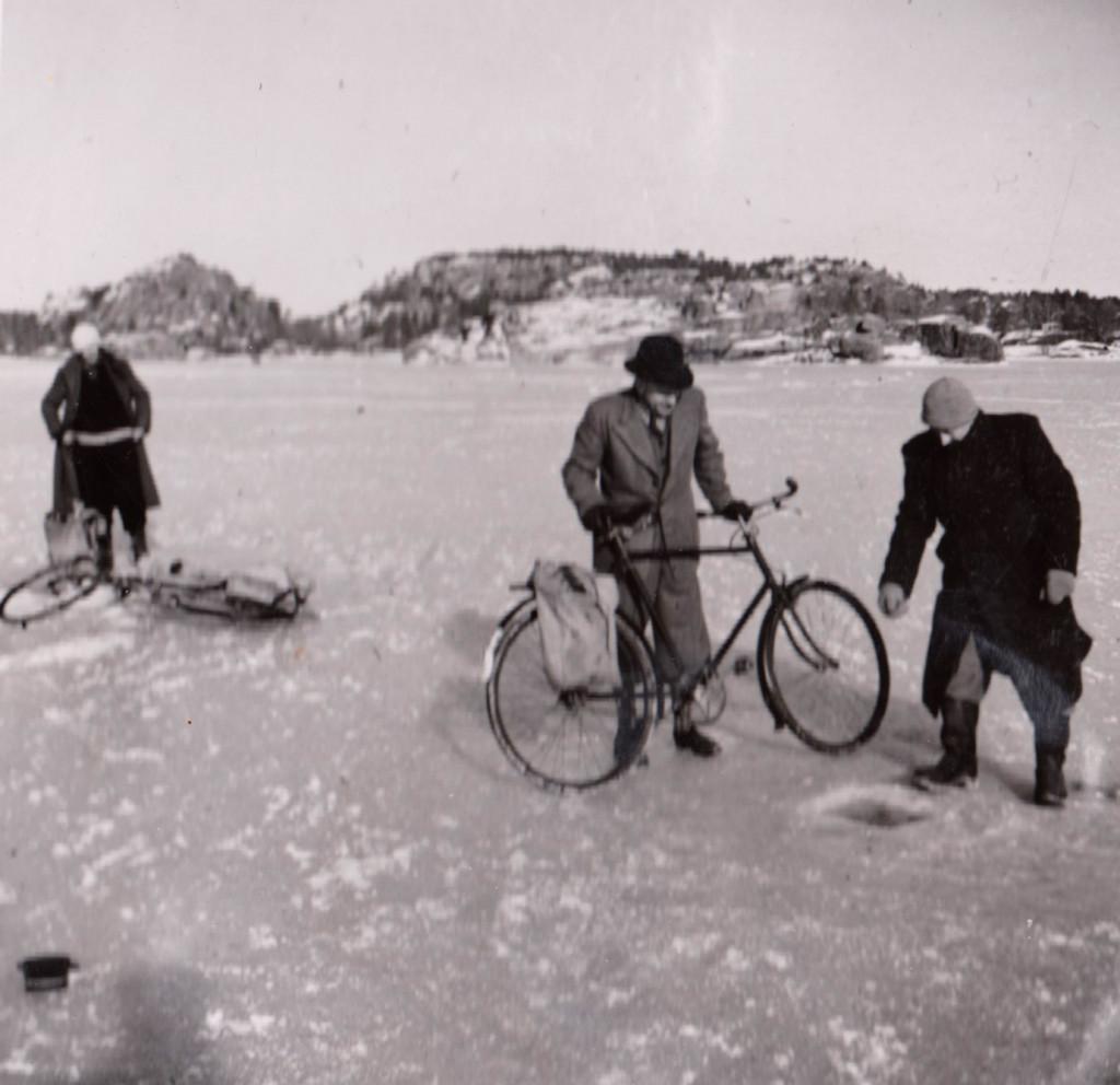 Bilde av Fjordfiske