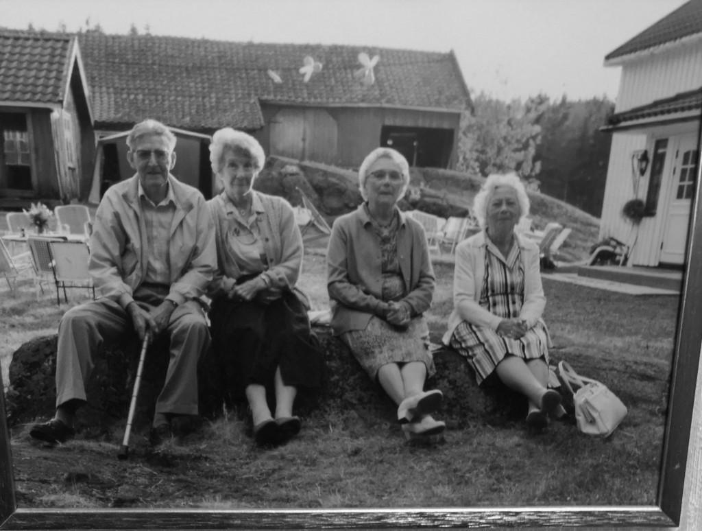 Bilde av Nedre Tørrestad.