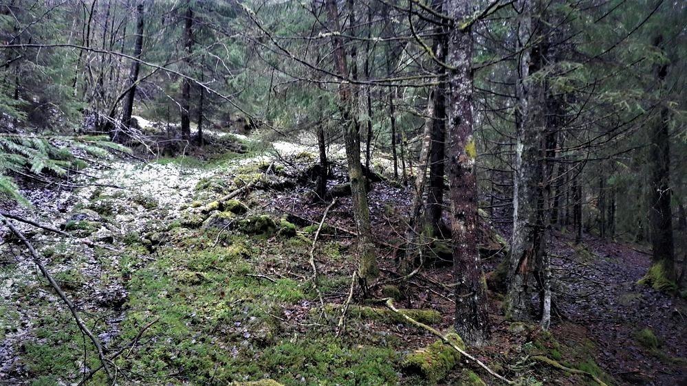 Bilde av KULTURMINNER PÅ ØVRE SOLBERG