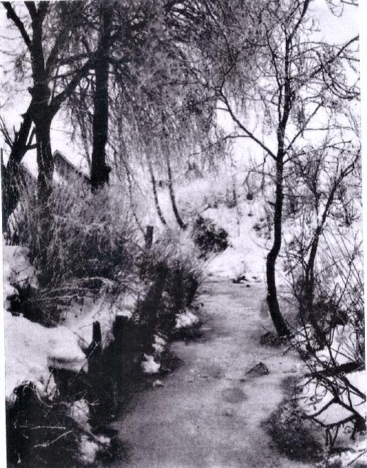 Bilde av Modalen med Mobekken