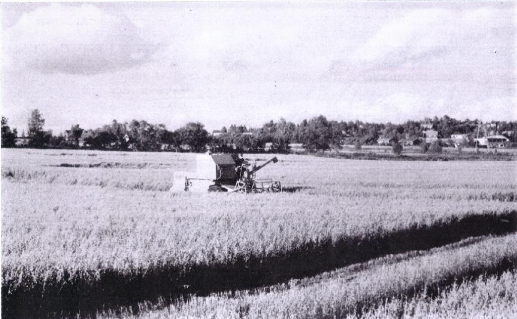 Bilde av Gårdsbruk på Mo