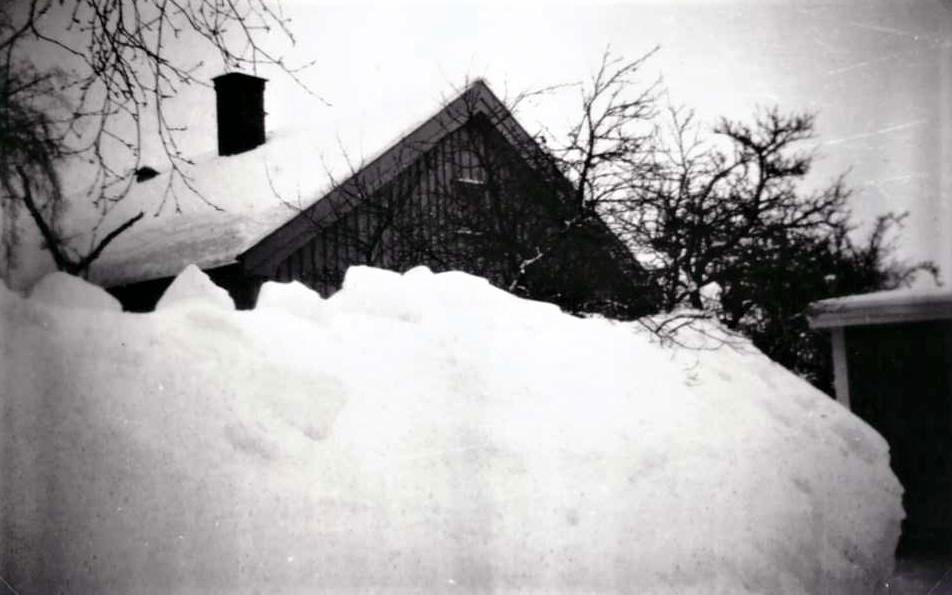 Bilde av MOSSERØDVEIEN - FRA HUNSTOKK TIL
