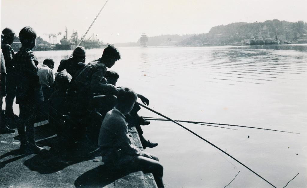 Bilde av Makrellfiske på brygga