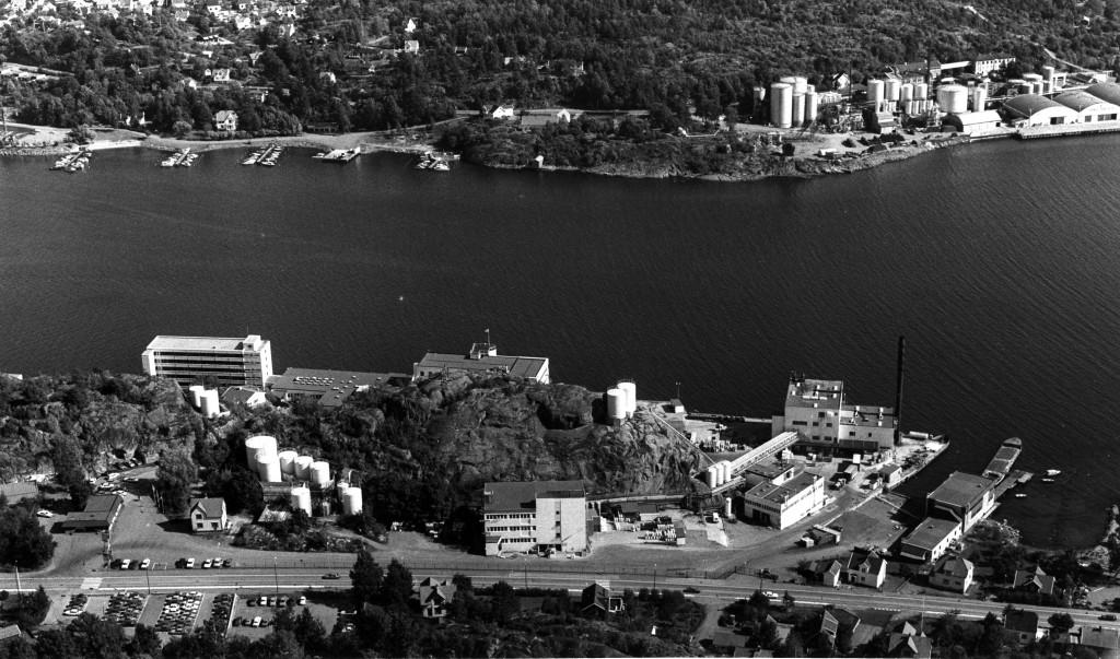 Bilde av Fjordbilde