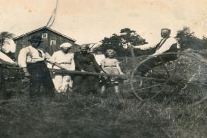Bilde av Landbruk