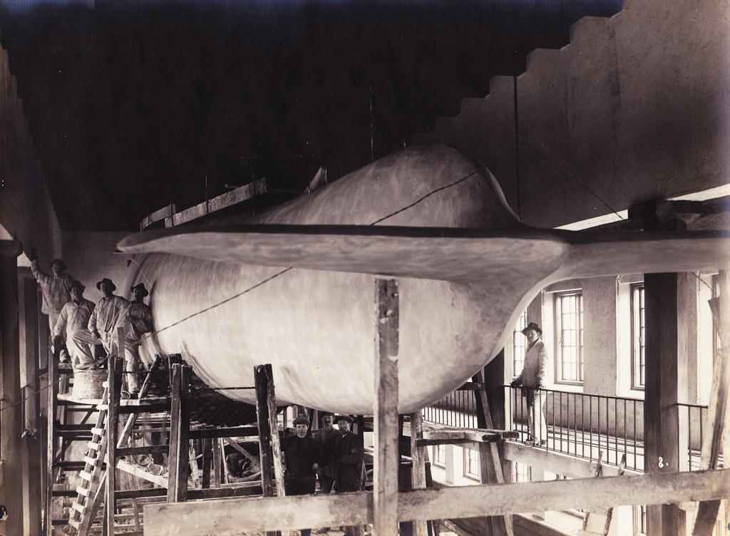 Bilde av Bygging av kopi av blåhval